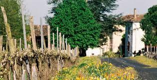 Gaillac AOC - Domaine Rotier